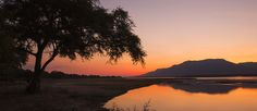Things to do in namibia, places to visit in namibia, everything you need Tourist Tube Stuff To Do, Things To Do, Victoria Falls, Cheap Travel, World Heritage Sites, Family Travel, Places To See, Waterfall, Vulture