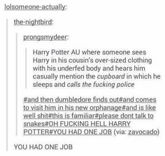 1485 Best Harry Potter Fandom - Headcanons, Facts and More