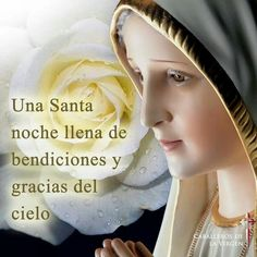 Caballeros de la Virgen added a new photo — with Lydia Gregorcic Terbanz and 29 others. Strong Faith, Blessed Mother, Virgin Mary, Instagram Posts, Beauty, Celestial, Blessings, Irish, Night