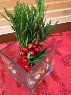 Simple Christmas Decor   Little Square glass with Nerium Oleander some berries, a red bow and a little piece of gold garland. By Jessica Marie Tous