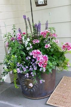 31 Pretty Front Door Flower Pots For A Good First Impression – Planters – Ideas of Planters – It is so so important to have a beautiful and inviting floor door entrance because if it is well decorated it creates interest among your guests and Beautiful Gardens, Beautiful Flowers, Beautiful Pictures, Exotic Flowers, Purple Flowers, Pot Jardin, Container Flowers, Succulent Containers, Full Sun Container Plants