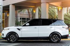 One sleek panda   #Rover #XOLuxury #blackonwhite