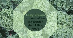 Hurray for green smoothies!!  Cancer Killing Foods