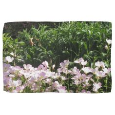 Nature Photo CherryHILL New Jersey America NVN663 Hand Towels