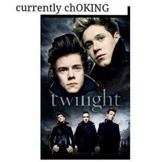 One Direction twilight