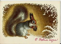 Christmas, New Year, Squirrel, Winter, Vintage  Russian Postcard 1977 by LucyMarket on Etsy