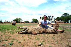 krokodil in Paga. Er zijn daar, echt waar, krokodillen boerderijen (krokodile farms).