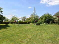 The lawn at Huntsmill Farm.