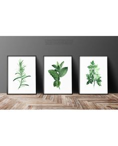 Set of 3 Herbs Watercolor Painting Food Art by ColorWatercolor