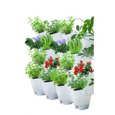 Westminster Wall Planter White 5 Pack