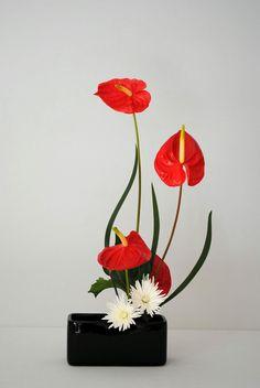 Eu vejo flores em voce...