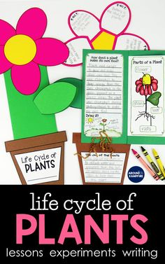 Life Cycle of Plants Unit, Investigations & Plant Life Cycle PowerPoint NGSS Plant Lessons, Science Lessons, Lessons For Kids, Science Writing, Teaching Writing, Teaching Resources, Primary Resources, Teaching Ideas, Reading Activities