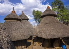 Ethiopian Best Fence Designs : country at a time l ethiopia home made hospitality ethiopian coffee ...