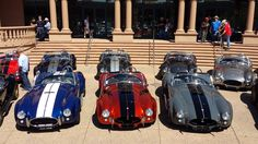 Ford Shelby Cobra, Mustang Cobra, Ford Mustang Shelby, Car Ford, Ford Gt, 427 Cobra, Good Looking Cars, Cars Usa, Project 365