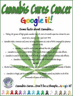 Cannabis Cures Cancer!  Google it!