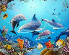 43 best Aquarium Live Wallpaper pictures in the best available resolution. Computer Wallpaper, Hd Wallpaper, Aquarium Live Wallpaper, Underwater Painting, Ocean Creatures, Orcas, Tier Fotos, Live Wallpapers, Colorful Pictures