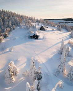 Likes, 171 Comments - Johannes Hulsch Seasonal Image, Lapland Finland, I Love Snow, Long Shadow, Winter Beauty, Winter Scenes, Winter Snow, Winter Wonderland, Beautiful Pictures