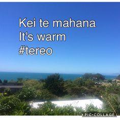 Kei te mahana / It's warm Teri Teri, Maori Songs, Languages, Teaching, Warm, Activities, Instagram Posts, Free, Idioms