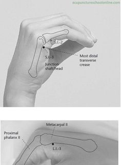 ( Back Stream HOUXI - Acupuncture points ) On the ulnar border of the hand, in the depression proximal to the metacarpophalangeal joint, at the border of the 'red and white' skin. Acupuncture Benefits, Acupuncture Points, Massage Benefits, Acupressure Points, Complementary Alternative Medicine, Reflexology Massage, Alternative Therapies, Traditional Chinese Medicine, Medical Information