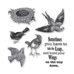 Sizzix - Hampton Art - Framelits Die and Repositionable Rubber Stamp Set - Wings