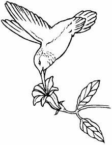 free line drawings woodworking resource from ColoringPages - free woodworking patterns scrollsawing projects intarsia plans