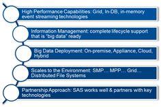 SAS: Big data - big play for Hadoop - Information Architect