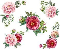 14 Flowers Clipart Floral Elements Flowers Flowers Clipart