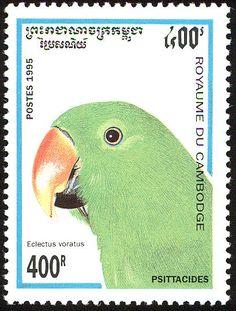 Camboya 1995 - El Loro Eclecto o Ecléctico,originario de las Islas Salomón, Nueva Guinea, nordeste de Australia y las Molucas