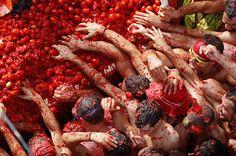Guerra de tomates na #Tomatina em #Valência.