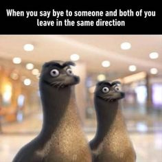Memes have came into our lives in an enormous way. We've been indulged in those memes so much that we can't keep them out of our lives. To be honest these memes are good enough to spend your time when you have nothing to do. Here are 24 Relatable Memes. Cool Memes, Really Funny Memes, Crazy Funny Memes, 9gag Funny, Stupid Memes, Funny Relatable Memes, Haha Funny, Best Memes, Funny Jokes