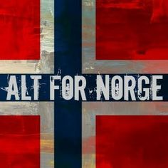Take a train ride in Norway. Norwegian trains are clean, safe, and the scenery is hard to beat. Beautiful Norway, Heavy Water, Trondheim, Language Lessons, Lillehammer, My Heritage, Train Rides, Finland, Denmark