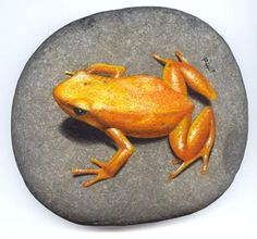 rock painting frog - Căutare Google