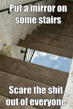 Put a mirror on some stairs - Win Picture | Webfail - Fail Pictures and Fail Videos