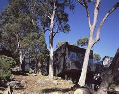 Treehouse in Lorne, Victoria | FMD Architects, Australia.