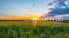 Rural landscape and sunset time-lapse HD Stock Footage Clip. Wide shot. 2016-01-17.