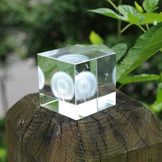 Dandelion Crystal Decoration