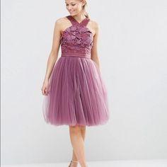Gorgeous Dress Nwt