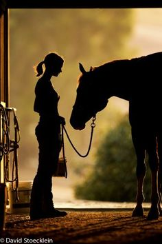 I'm going to have to write just such a scene in the book I'm currently writing---Veiled at Midnight. This will be Miri tending her father's horse.