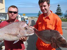 Fishing Perth, Fishing Charters Perth Fishing Photos, Fishing Videos, Continental Shelf, Photos Of Fish, Winter Fishing, Salmon Run, Perth Western Australia, Charter Boat, Fishing Charters
