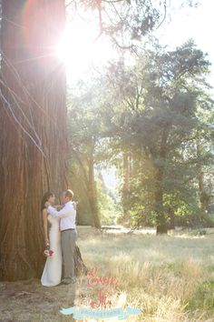 Ahwahnee Wedding Yosemite  Wedding Sequoia   Sacramento Photographer  www.eviejrphotos.com
