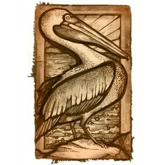 La Pelican- The Pelican State is another name for Louisiana