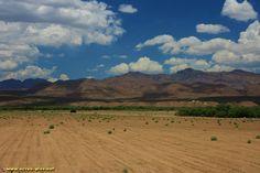 Les Gila Mountains pres de Bylas - Arizona - Etats Unis