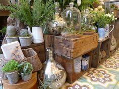 polux fleuriste florist nyc l Gardenista Garden Center Displays, Garden Centre, Tree Shop, Garden Nursery, Garden Shop, Store Displays, Deco Design, Shop Interiors, Garden Projects