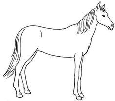 kolay hayvan çizimleri: Yandex.Görsel'de 25 bin görsel bulundu