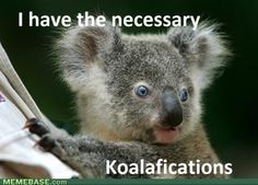 Necessary koalafications