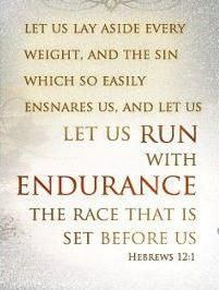 What sins and lifestyles and mind-sets are presently entangling me?   Run with endurance and free of those sins towards Christ's image within me