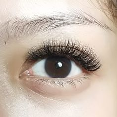 4D Russian Volume Eyelash Extensions