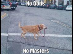 Only Dog! : firstworldanarchists