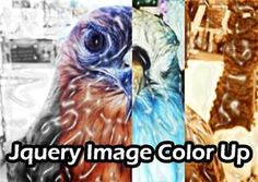 jQuery Image Color-Up Plugin
