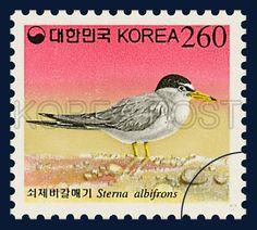 Definitive Postage Strmps, Little Tern 1923, 1997 11 01, red, white yellow, 보통우표, 쇠제비갈매기, 1997년 11월 1일, postage 우표